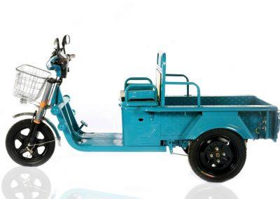 Triciclo Mini Cargo