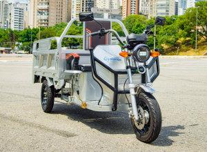 Triciclo Cargo Basculante